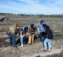 Replanting Begins at WCHS's Renovated Forestry Plot