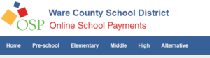 Online Payment System for WXMS