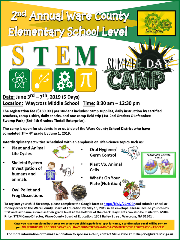 Elementary STEM Camp Flyer