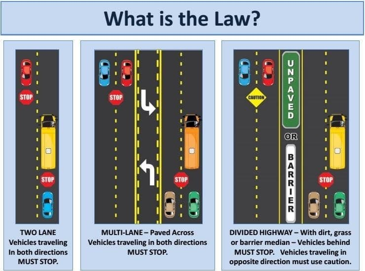 New Bus Law graphic